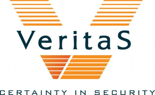 Veritas International Consultants